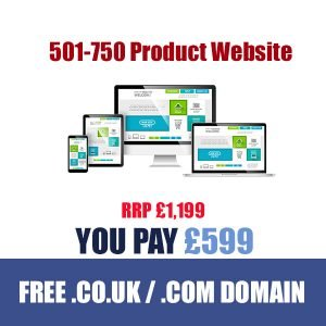 501-750-Product-ecommerce-website